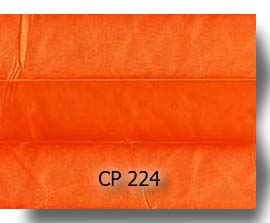 CP224